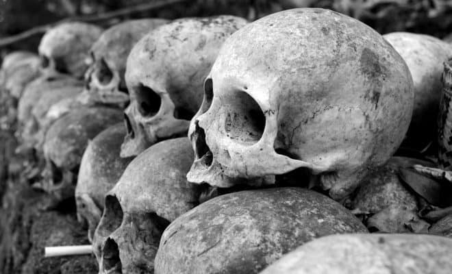 https://www.pexels.com/photo/grey-skulls-piled-on-ground-1096925/