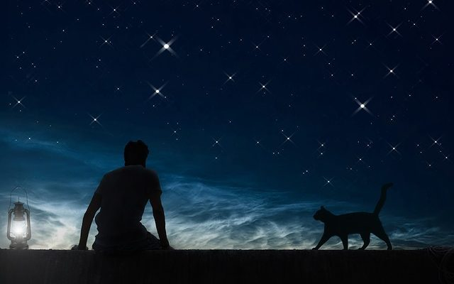 daydreamer-night-sky-stars