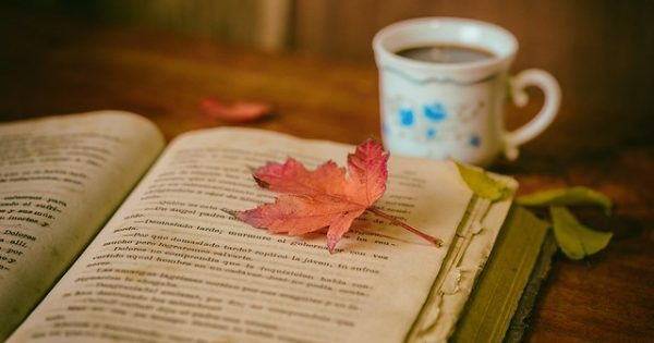 An open book with an orange maple leaf on top